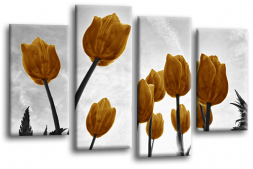 Floral Flowers Canvas Wall Art Picture Tulip Print Gold White